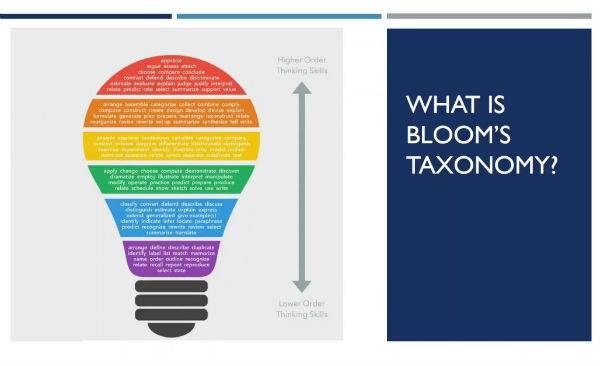 Bloom's Taxonomy Individual Application